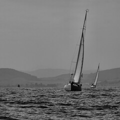 The race (ccgd) Tags: bw scotland boat sail cromarty moray firth