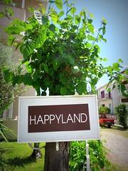 Happyland (Mister F) Tags: happyland