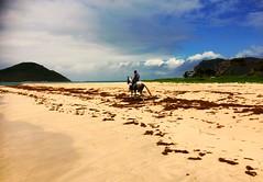 Saint Lucia (Lonfunguy) Tags: caribbean vieuxfort saintlucia beachride