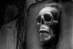 Skull B&W (Ashraf Siddiqui 76) Tags: skull spooky