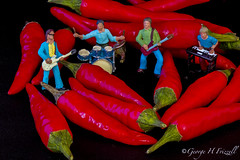 Hot/Cold (toonarmy59) Tags: red macro miniature micro peppers figures redhotchillipeppers chillies minature hotcold macromondays