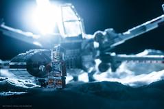 """X-WING STARFIGHTER"" (Jose Antonio Hidalgo Jimenez) Tags: wallpaper macro starwars nikon lego stormtroopers snowstorm troopers sniper almeria atat diorama blaster hansolo battlefront endor starwarstoys milleniumfalcon starwarslego snowspeeder laguerradelasgalaxias imperialshuttle maquetas speederbike balerma snowplanet  snowtroopers  starwarsiv antipersonalmine starwarsv jakku starwarsart legion501 battleofhoth starwarswallpaper mineexplosion imperialtroopers starkiller lanzaderaimperial  themoonofendor starwarsvi starwarsdisney dioramastarwars endorplanet hothbase tatooineplanet hothplanet starwarsvii dioramalego starwarsdesigns planetatatooine starwarsviii battlefrontstarwars baseeco maquetastarwars dioramahoth dioramatatooine battlefronthothplanet dioramaendor winterinendor endorwinter snowendor jynerso rogeone rogeonestarwar jakkuplanet shotdownfighter"