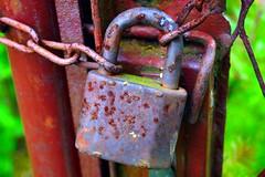 Padlock (daria_darek_photography) Tags: green colors photography key poland schloss padlock daria klucz darek strzelecka klodka blotnica