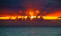 Sky Blast (telazac) Tags: ocean statepark trees sunset red sea orange seascape water yellow clouds oregon canon fire us sand unitedstates tillamook south lookout cape blast pacificocrean capelookoutstatepark capetrail canon7d