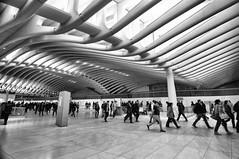 Path Station (nyperson) Tags: blackandwhite architecture newyorkcity calatrava interior commuters stepping