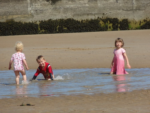 At Collieston on a sunny day (20)