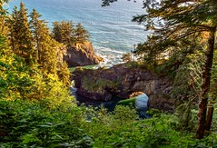 Natural Bridges, Oregon (Cole Chase Photography) Tags: brookings oregon samuelhboardmanstatepark pacificnorthwest naturalbridges pacificcoast pacificocean canon eos5dmarkiii summer