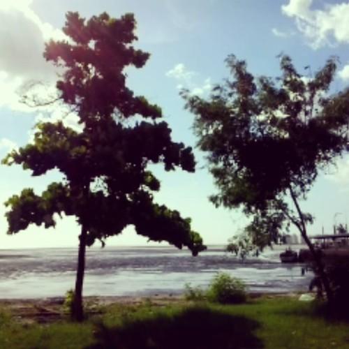 Jansen Lake/35 degrees. São Luís/Brazil. July2016. #InstaPanga. #Panga36AnosSportLife. #PangaSince1980. #Panga50Anos.