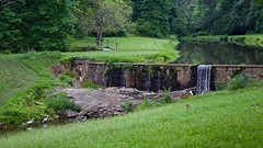 IT'S JUST WATER OVER THE DAM (NC Cigany) Tags: bridge green water birds rural nc dam country egret bucolic