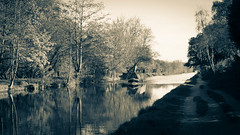 Narrow boat on the Bridgewater Canal (Rory Holmes) Tags: trees water sepia river boat canal path narrow barge narrowboat washedout bridgewater