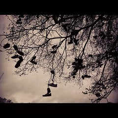 Skate shoes hang in protest! (art.believe) Tags: square squareformat sutro iphoneography instagramapp uploaded:by=instagram