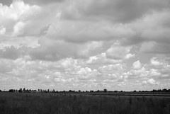 DSC_0673 (Doc Strange 87) Tags: park sky parco cloud white black clouds blackwhite nikon country bn campagna prato d3000