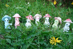 Mick-Oze the mushroom / GROUP (The Maman Panda) Tags: pet cute mushroom doll artist bjd tendres chimeres