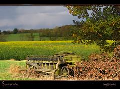 Seen it all before......... (Tony / Guy@Fawkes) Tags: field wagon spring farm farmland rape crop