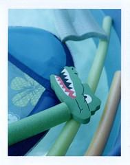 pool time (EllenJo) Tags: home water pool polaroid backyard alligator may f56 floaties landcamera 160 may19 instantfilm 2013 fujifp100c ellenjo ellenjoroberts polaroidpathfinder rollfilmcameraconvertedtopackfilm convertedpathfinder