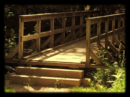 Park School ~ bridge to the woods
