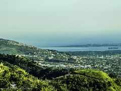 Lanscape Over Kingston (Eye-View Photography) Tags: trees houses sea green nature beautiful landscape view hill explore kingston jamaica eyeview flickraward
