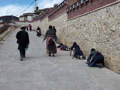 Yunnan II (Feb. 13) Shangri-La (Zhongdian) (Syydehaas) Tags: china yak temple yulong pagoda gate asia asien wasser tea native buddha tibet shangrila monastery mao architektur tor himalaya kunming yunnan sichuan trade tee lijiang mekong cultural kloster tigerleapinggorge tempel zhongdian overland gompa naxi indochina dayan schrein pagode zeremonie mnch laotse shuhe konfuzius dongba haba buddhismus baishuitai hutiao abenteuer kaskaden blackdragonpool jangtze josephrock southwestchina mingdynastie teahorseroad sdwestchina gandensumtseling dukezong tigersprungschlucht nanzhao jefffuchs highflyer261 syydehaas yangfamilie puertea puertee wangutempel zhongi yunquanpark longquantempel gelbmtze songzanilintempel vollmondzeremonie