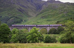 Over the Arches: 2 First ScotRail 156's - Glenfinnan Viaduct (96tommy) Tags: new old uk bridge mountain station train photography photo flickr diesel fort britain united hill great transport traction engine barbie july first rail railway kingdom william scotrail class glen viaduct scot valley transportation gb multiple locomotive glenfinnan 2012 156 unit sprinters mallaig livery scotalnd dmu