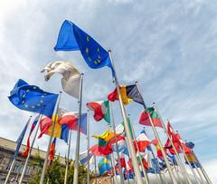 colori d'Europa (forastico) Tags: europa colori francia bandiere d60 strasburgo forastico