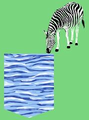 Zebra (giovaniktorz) Tags: illustration photoshop design colorfull tshirt illusion pocket tee ilustrao ilustration desenho ilustracion estampa illustrao illustracion