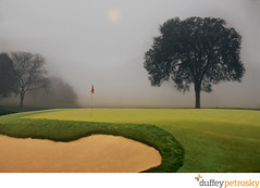 Country Club of Detroit, 17th green. (Duffey Petrosky) Tags: morning trees grass fog mi golf michigan course ccd grosspoint grossepoint hdroutput thecountryclubofdetroit