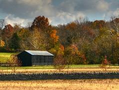 Serenity At The Parklands Of Floyds Fork (Phyllis74) Tags: park autumn fall creek day cloudy kentucky louisville beckleycreekpark pwfall beckleycreek theparklandsoffloydsfork