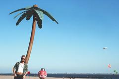 Coney Island dream (Israel | McCollum) Tags: lighting city nyc newyorkcity trees boy sea sky ny tree nature colors hair balloons coneyisland island photography israel model pretty creative picture shell palm brooklynbridge coney mccollum canonrebelt3i