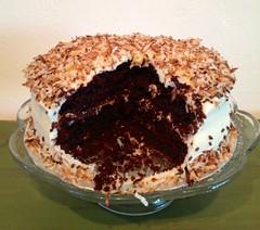 Chocolate Coconut Cake by Elicia, Santa Cruz CA, www.birthdaycakes4free.com