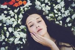 Marissa Grace (Amanda Mabel) Tags: spring sydney australia flowerbed modeltest chadwickmodels amandamabel amandamabelphotography chadwicksydney marissafuller marissachadwick gracebijoux marissagrace chadwickwomen chadwickmodelssydney gracebijouxheadpiece