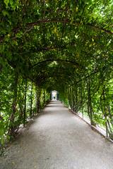 Schnbrunn Castle (Wolfhowl) Tags: vienna wien park city trip autumn castle austria september schoenbrunn 2013 greenarch