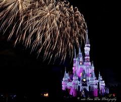 Magic Kingdom (wdwSteve) Tags: christmas nikon magic kingdom d7000 sigma1750mmf28 disneyworld2013