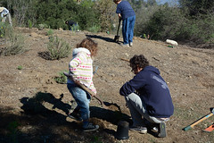 Big and little volunteers (Weeding Wild Suburbia) Tags: spnp