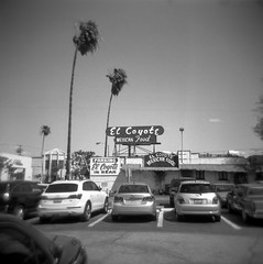 he says that he's smuggled a thousand good men and he says that he's never been caught (Super G) Tags: california blackandwhite bw film square losangeles holga yum unitedstates mexicanfood palmtrees elcoyote selfdeveloped holga120n trix400tx thisisthecitylosangelescalifornia d7695mins68d11 ineedtogetbackherewhentheparkinglotisempty