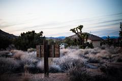 Joshua Tree RV Trip (ChristyB30) Tags: california nightphotography camping sunset green sunrise stars outdoors nationalpark joshuatree rv