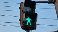 Japanese trafficlights (Ampelfreund & Signal Hunter) Tags: japan lights traffic led pedestrians signal ampel verkehrsampel signalgeber fusgnger