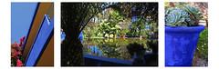 Carte postale ... (sosivov) Tags: flowers blue garden maroc montage marrakech brightcolours jardinmajorelle