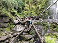 lorne 384 (raqib) Tags: holiday nature water trekking trek waterfall hiking victoria hike falls bushwalking vegetation rc lorne iphone erskine erskinefalls waterfallaustralia