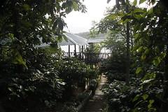 vedaguru ayurvedic village