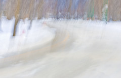 edwinloyolaNewYorkPortfolioReviewWinter04 (Edwin Loyola) Tags: autumn winter summer abstract fall nature seasons fineart fourseasons icm esl intentionalcameramovement edwinsloyola edwinloyola edwinloyolaphotography eslphotography