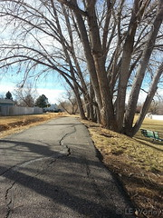 January 25, 2015 - Unseasonably warm temperatures make for a good day for a walk. (LE Worley)