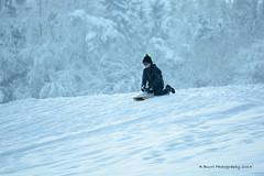 Boy Sledding (R. Burri Photography) Tags: schnee winter boy snow kids photography switzerland zurich richard fotos sledding burri binz schlitteln knabe burrifotos