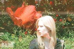 (MalderaFilm&Digital) Tags: park nyc winter sunset snow newyork cold classic film beauty brooklyn 35mm vintage liberty island photography photo oldstyle kodak doubleexposure manhattan snowstorm broadway parkslope horror 70s fujifilm kodachrome filmcamera statueofliberty canonae1 cinematography canonae1program slope juno bk 35mmphotography productionstill picoftheday kodakfilm 70sstyle fujicolor 7ave filmisnotdead filmisalive besttimeoftheyear italianartists filmisawesome photographersdirectory christmas2014 malderafilm photgraphersonflickr