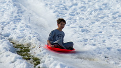Snow Day (2015)-42 (Swallia23) Tags: snow ice out lasvegas nv wipe snowday sleding summerlin 2015