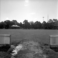 St Leonards Oval (The Dent.) Tags: mamiya 9 11 d76 55mm mins c3 sekor tmy2