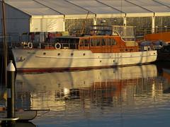 IMG_1454 Miss Eve in the morning sun. (Boat bloke) Tags: classic festival pine canon yacht timber tasmania hobart huon australianwoodenboatfestival sx50hs