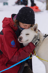 BFF (Benocrash) Tags: dog chien snow norway hug friend pole svalbard arctic ami neige polar sled arctique longyearbyen northernmost polaire norvge traneau d7100