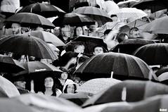 portable roofs (Behni88) Tags: show people white black wet rain umbrella noir leute looking crowd watching scene menschen parasol blank seeing afraid scared blanche weiss scena vor schwarz angst regen gens menge publikum ludzie nass bhne regenschirm schirm hvit przed strach czarno biale deszczem angucken mokro ogladac