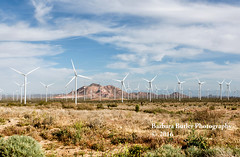 Alien Army (RedHatGal: Barbara Butler/FireCreek Photography) Tags: ca landscape energy power desert outdoor windmills mojave greenpower redhatgal windtubines firecreekphotography earthinvasion barbarabutlerphotography