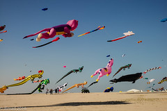 Kingdom of Kites... (EHA73) Tags: leica kites kuwait leicamp summiluxm11450asph internationalkitesfestival typ240